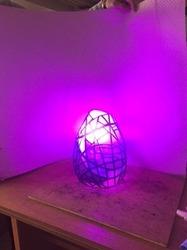 tani_lamp_p.JPG
